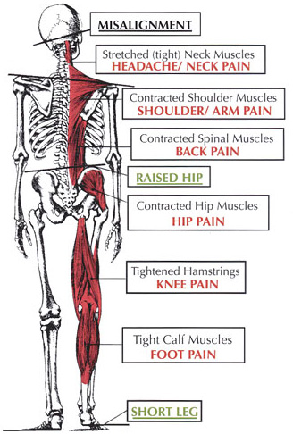 Chiropractic Care Helps